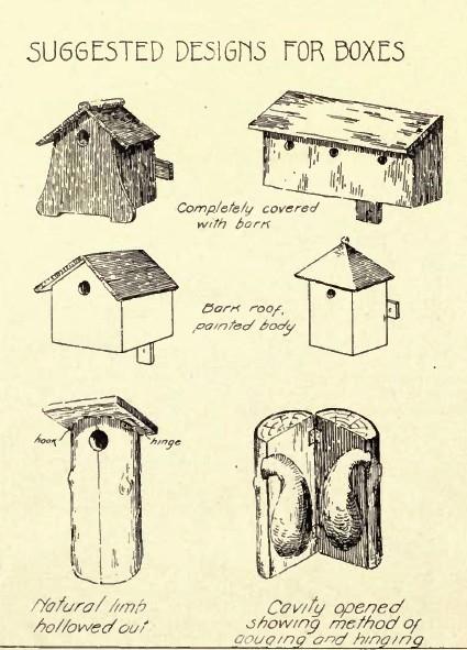 woodworking bird house plans